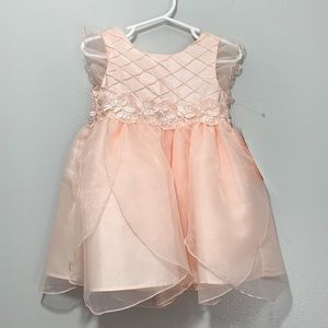 Sweet Heart Rose Special Occasion Punk Tulle Dress